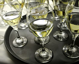 Refreshing White Wines (Photo by Robb DeCamp)